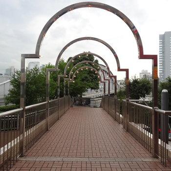 隅田川へ続きます