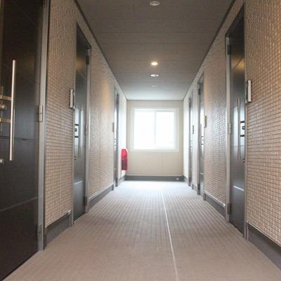 外からの光が入る共用廊下。明るくて安心!