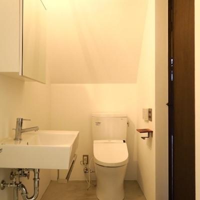 洗面台とトイレは一緒の空間!