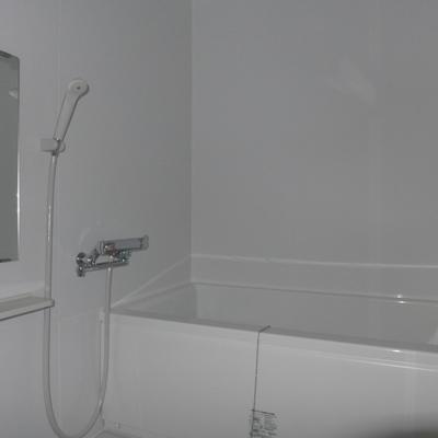 お風呂はこんな感じ※写真は照明なしの状態です