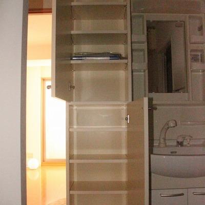 洗面台横にも大きな収納あり(通電前のためフラッシュ使用)