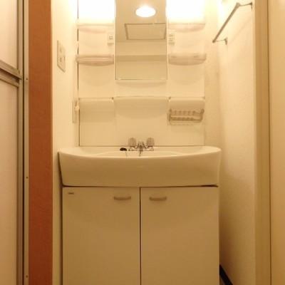 洗面台、後ろには洗濯機置き場があります