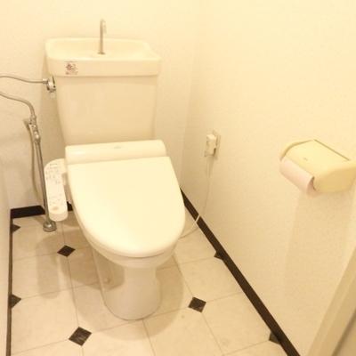 広めのトイレ、ウォシュレット付き