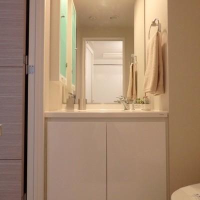 横っちょの収納扉が素敵です