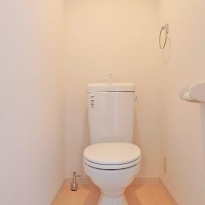 トイレはいたって普通。