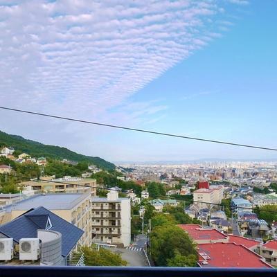 見晴らし爽快。大阪湾まで見える。