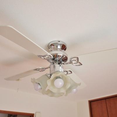 天井もお洒落。