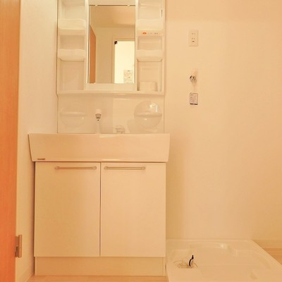 独立洗面台はシャワー付きです。