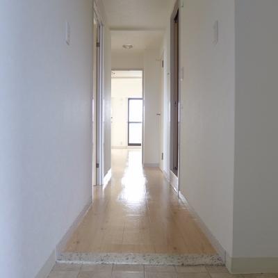 玄関にも光が届く※写真は別部屋