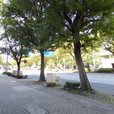 名駅すぐそば。下広井町の交差点もスグ目の前です