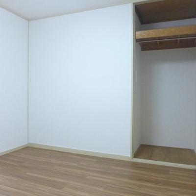 洋室の収納です
