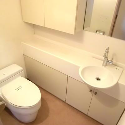豪華すぎる1階のトイレにきゅん