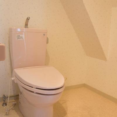 広めのトイレですね