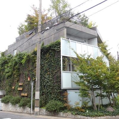緑化されたオシャレな建物!