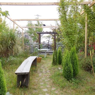 屋上には入居者専用の庭園が開放されています