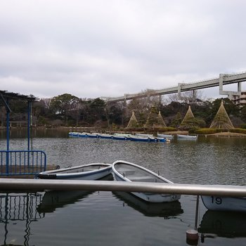 千葉公園、のんびりしてます。