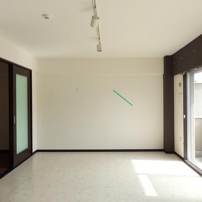 天井にはライティングレールを使用