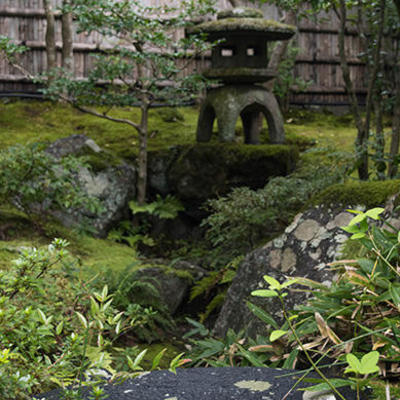 これぞ、日本庭園。