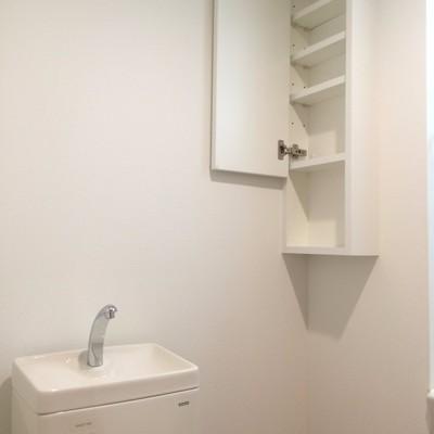 トイレ上には小さい収納も