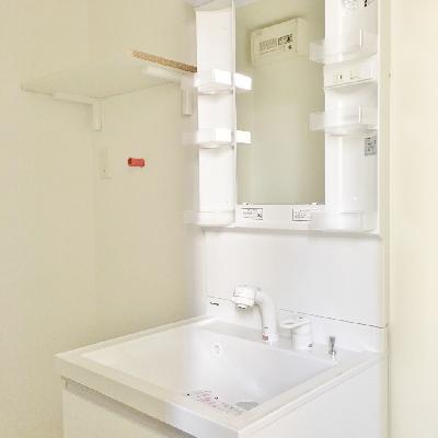 洗面台は立派です!