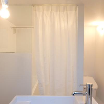 カーテンで仕切られてるのが浴室