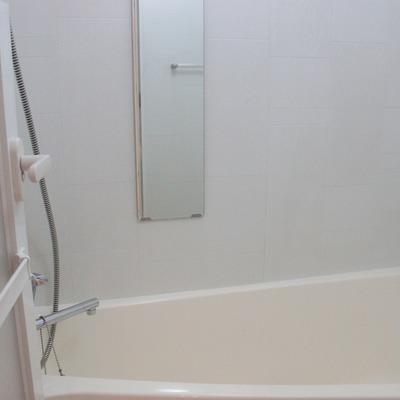 縦長、大きな鏡とメタルシャワーホースがステキ