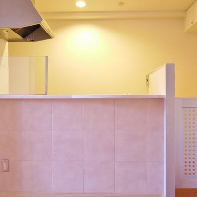 キッチン横には、ワンちゃんが入ってこないように仕切りが。