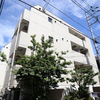 プレール・ドゥーク北新宿II