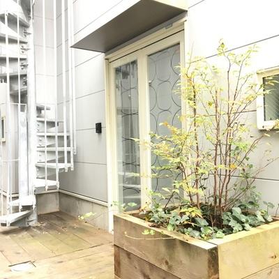 玄関。隣の螺旋階段から屋上にもいけます