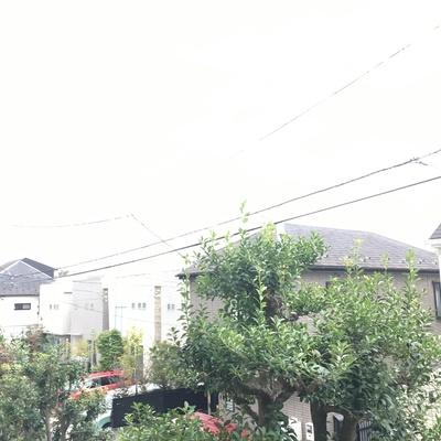 阿佐ヶ谷の穏やかな空気