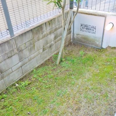 庭が付いてます。