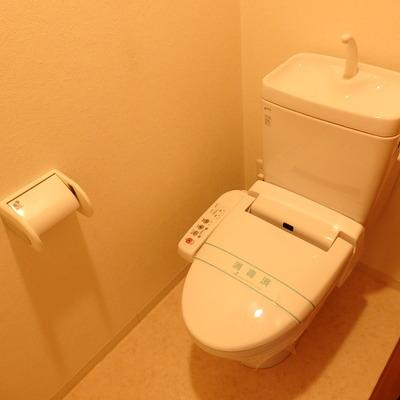 個室のトイレです