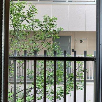 窓からの眺望はこんな感じ、建物は目の前にありますが少し余白あり
