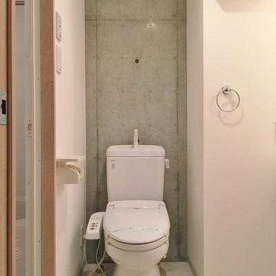 トイレの裏コンクリ