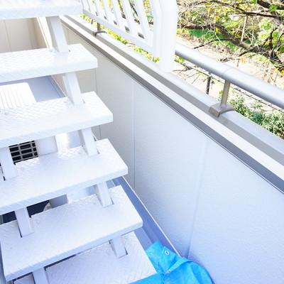 階段上は屋上ですがいけません・・。