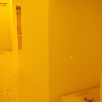 洗濯機置き場は絶妙に目につかない廊下に。ロールスクリーン付。