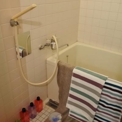 お風呂もちょっと古めです。