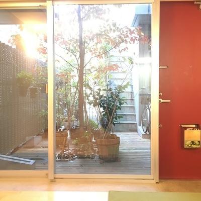 キッチン側から。赤いドアが良いアクセントに!※写真は前回募集時のものです