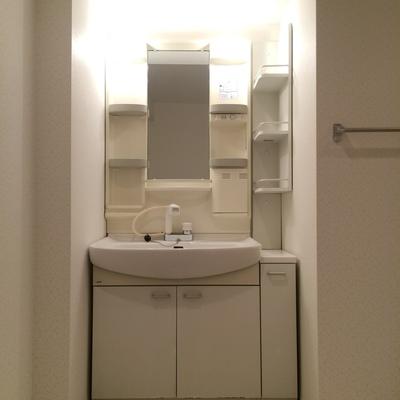 大きくて使いやすい洗面台