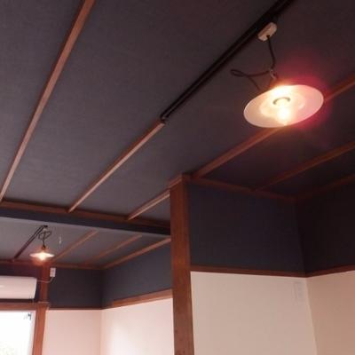 照明はライティングレール、天井のクロスが紺でシック!
