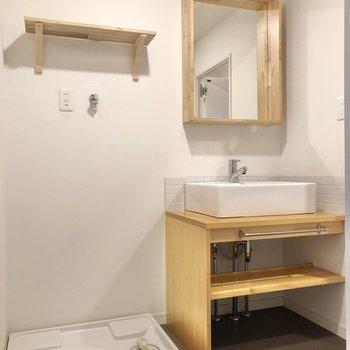 洗剤などは洗濯機置き場の上に置いておけますね。