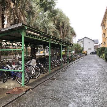 たくさんの自転車が並ぶ駐輪場。