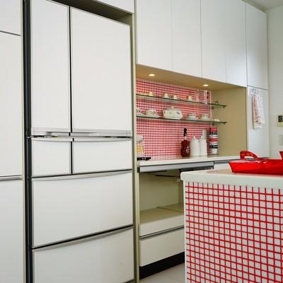 冷蔵庫もどーんと!