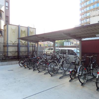 良い感じの自転車が並んでいます。たしかに、この大通りを走ったら気持ち好さそう。