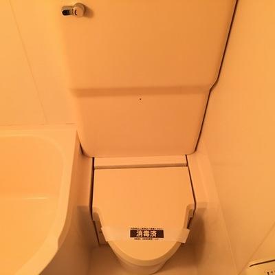 えー!!一応トイレです。。