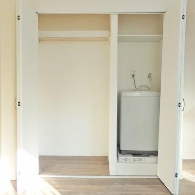 開ければ洗濯機置き場。収納もまずまず。