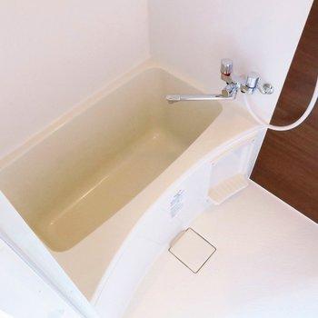 お風呂も十分綺麗ですね!