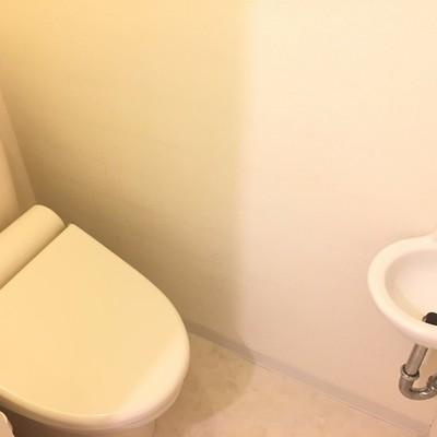 トイレ。手洗い洗面がかわいい!