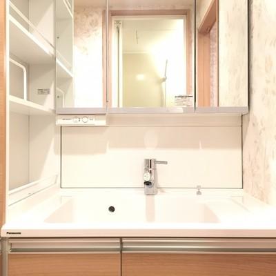 独立洗面台。清潔感!使い勝手も良さそう