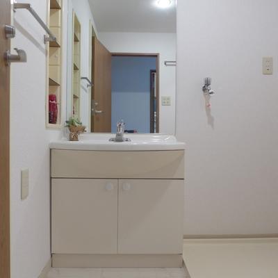 洗面台も大きめです。※写真は別部屋です